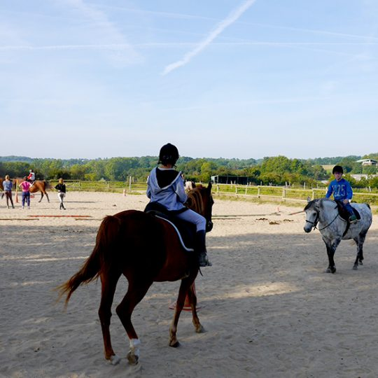 https://chambresdhote-azkena.fr/wp-content/uploads/2016/10/equitation-540x540.jpg