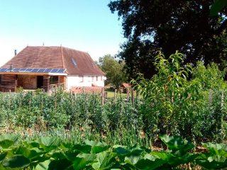 garden - Host's house - azkena