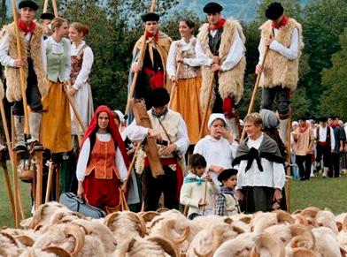 Shepherds festival